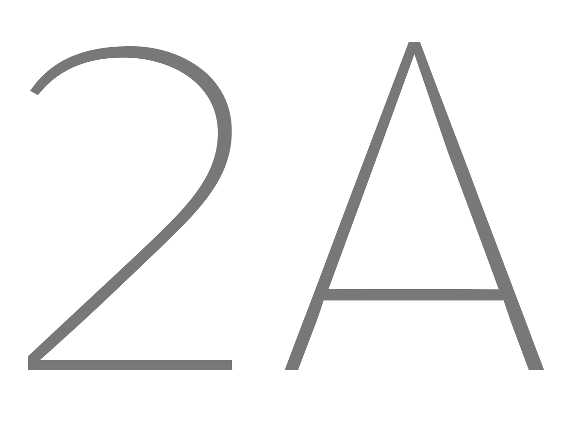 '2A' · Signer Number and Capital
